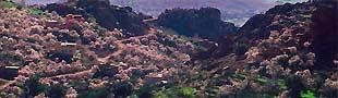Marokko Glückliches Tal